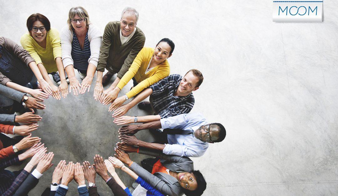 Feedback e harmonia no ambiente corporativo
