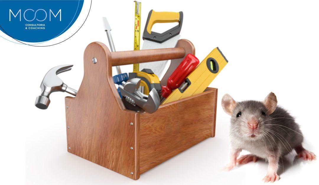 O Ratinho Organizador